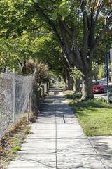 A Calm Street (.:Axle:.) Tags: washington districtofcolumbia usa washingtondc capital nationalcapital capitalcity downtown urban city sony sonya6000 digital compactdigitalsystem sonyepz1650mm13556oss