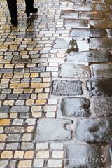 Nasses Straenpflaster (Martin Schweitzer) Tags: spaziergang altstadt strase regen fusgngerzone spiegelung stadt wassertropfen wetter aktivitten strasenfotografie regensburg bayern deutschland