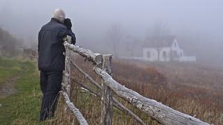 fellow photographer (explored)