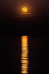 Super moon rise (Muhammad Al-Qatam) Tags: nikon d810 muhammadalqatam malqatam alqatam kuwait kuwaitcity landscape seascape super moon reflection
