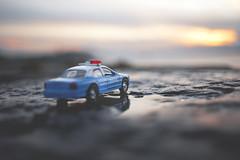 Taking in sunset (explore) (DannyBradley) Tags: car toycar explored explore mini world nikon flickr sunset project