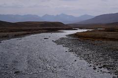 MAQ_0410 (MolviDSLR) Tags: deosair national park skardu gilgit baltistan northern areas pakistan brown bear wild life scenery landscape