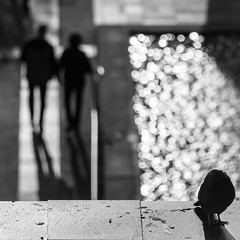 Pigeon (Rnout) Tags: usa sanfrancisco sfmoma sanfranciscomuseumofmodernart