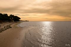 Andernos - France (Juju de Tonnay) Tags: bassin arcachon mer rivage sable exterieur