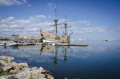 Reflections of a Mayflower (Doug.Mall) Tags: dogwood52 52weeks landscape mayflower2 photochallenge plymouth reflection usa