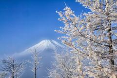 White and Blue (shinichiro*) Tags: 20161126sdim0671editedit 2016 crazyshin sigmasd1merrill sd1m sigma1770mmf284dcmacrohsm november autumn fuji lakeyamanaka snow  fog mist white blue nik 31250018795 201612gettyuploadesp 627822786