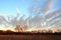 Late Autumn Prairie (NaturalLight) Tags: autumn prairie clouds chisholmcreekpark wichita kansas