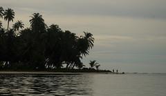 Tailana in the evening (๑۩๑ V ๑۩๑) Tags: ocean sea beach nature sumatra indonesia sand asia southeastasia aceh sziget pulau sumatera singkil banyak indonézia tailana szumátra