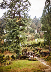 Lamperi Botanical Garden (mybhutanllc) Tags: bhutan sightseeing landmark attractions dochula localpark