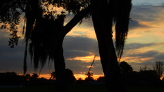 Quiet Sunset (Jim Mullhaupt) Tags: pictures camera pink blue sunset red wallpaper sky orange sun color tree weather silhouette yellow clouds landscape photography gold evening photo nikon flickr sundown florida dusk snapshot picture palm exotic p900 tropical coolpix bradenton endofday cloudsstormssunsetssunrises nikoncoolpixp900 coolpixp900 nikonp900 jimmullhaupt