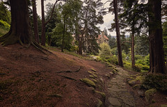 Cragside House (www.SuperStoked.me) Tags: england house lake rooftop drive hall woods path lord northumberland national valley trust nationaltrust tarn armstrong slipper crozier rothbury cragside tumbleton crozierdrive tumbletonlake slippertarn