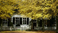 HFF (Cajaflez) Tags: autumn trees house bomen herbst herfst haus huis autun amerongen baumen