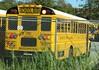 Brewster CSD #310 (ThoseGuys119) Tags: schoolbus icce icre brewsterny icfe bluebirdallamerican leonardbussales brewstercsd