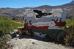 Achoma - Colca Valley (-AX-) Tags: chien perú pancarte colcavalley achoma