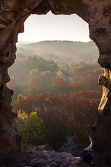 Fenêtre sur nature flamboyante