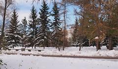 PA240093_stitch (Jasonito) Tags: autumn panorama russia sigma olympus omsk f28 omd   30mm 2015  mft em5  micro43 microfourthirds omdem5