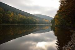 Le charme de l'automne (Excalibur67) Tags: autumn forest automne landscape nikon sigma reflexion reflets paysages eaux tangs d7100 vosgesdunord forts ex1020f456dchsm