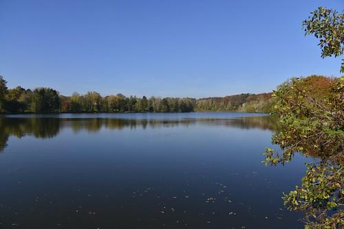 Le Grand Etang entouré de forêts en automne