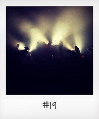 """#DailyPolaroid of 17-10-15 #19 • <a style=""""font-size:0.8em;"""" href=""""http://www.flickr.com/photos/47939785@N05/22714294093/"""" target=""""_blank"""">View on Flickr</a>"""