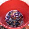 Kings in the Bath (lyndell23) Tags: handmade handknit christmasdecoration 3wisemen handknitting mochimochiland