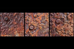Rusty Screws
