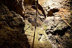 Ancient ladder (RichSeattle) Tags: nikon d750 california america roadtrip richseattle shasta shastacaverns lakeshastacaverns lakeshasta cave cavern rock formation stalagmite stalactite