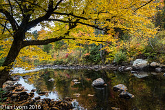 Fall Colours & River - Stark, New Hampshire (IanLyons) Tags: stark usa tranquilscene northamerica concepts river newhampshire scenic reflections colourful landscape fall water fallcolours