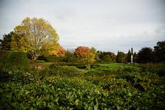 JJN_3198 (James J. Novotny) Tags: chicago conservatory botanical gardens garden flowers flower nikon d750 path paths skokie lagoons