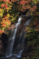 In the Heart of the Forest (jasohill) Tags: autumn october time color waterfall tohoku nature photography life moments fall 2016 iwate japan hachimantai silky long exposure eos 80d