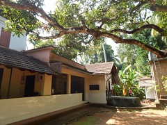 Villages Near Calicut Kerala Photography By CHINMAYA M (40)
