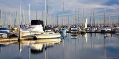 [Lines] (miltonsun) Tags: yachtclub sierrapoint brisbane california shore seascape bay ngc bayarea landscape seaside