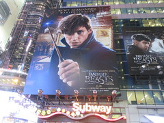 Fantastic Beasts And Where to Find Them Billboard Times Square 7766 (Brechtbug) Tags: fantastic beasts and where find them harry potter universe continued movie billboard film poster billboards advertisement transportation theatre broadway 7th avenue 45th street near 42nd theater district new york city 11082016 ad pop popular art mural tile two daniel radcliffe ron rupert grint hermione emma watson j k rowling wizarding world etc director david yates eddie redmayne times square nyc