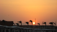 IMG_1244 (Sergio_from_Chernihiv) Tags: hurghada egypt 2008