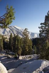 Unreal (annelaurem) Tags: yosemitenationalpark yosemite nationalpark california usa america stone trees pines bluesky mountain view