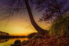 Autumn Sunset, Lakeside (Wes Iversen) Tags: brighton hss kensingtonmetropark michigan milford nikkor24120mm sliderssunday autumn autumncolor grasses lakes leaves sunsets trees water painterly