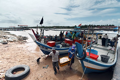 Busy day (<Pirate>) Tags: kota kuala muda fisherman fish trader pasar bisik cat boat low tide fresh nature sea ray masters gnd 09soft 1018 is stm kedah
