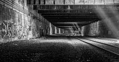 Freedom Tunnel. NYC (salmonmark10) Tags: