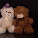 Teddy with friend