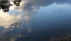 splashes (Myrfyn) Tags: splashes ripples reflections skimming llanberris