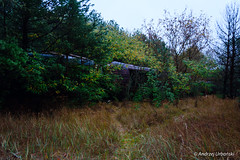 DSC_1616 (andrzej56urbanski) Tags: chernobyl czaes ukraine pripyat prypeć kyivskaoblast ua
