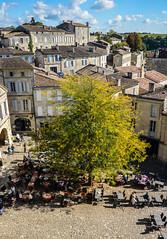 St Emilion (baptiste.mesnier) Tags: arbre place village saintémilion bordeaux