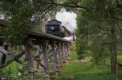 Cockatoo Creek (Dobpics O'Brien) Tags: locomotive pbr puffingbilly puffing pbps pass billy bridge cockatoo creek train trestle 14a steam victorian victoria vr rail railway railways