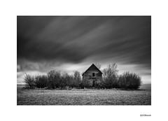 Rural Alberta. (local37) Tags: rural alberta canada bw abandoned house le fuji