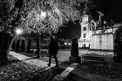 Zamosc 2 (RafalGorski) Tags: zamosc city monochrome blackandwhite zamoyski monument night nikon nikkor tripod longexposition lubelskie cityscape urban people walking