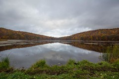840A6556 (rpealit) Tags: scenery wildlife nature ryker lake sparta mountain management area