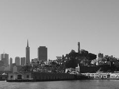 San Francisco 2016 (hunbille) Tags: coit tower coittower skyline alcatrazcruise transamerica pyramid transamericapyramid san francisco sanfrancisco california america usa