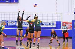 IMG_6695 (SJH Foto) Tags: girls volleyball high school allentown central catholic somerset team teen teenager net battle spike block action shot jump midair