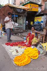 Kolkata 24-09-2016-85 (SaVo Fotografie www.savofotografie.wordpress.com) Tags: kolkata india kalighat kali temple