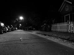 326/366 (moke076) Tags: 2016 365 366 project366 project 365project project365 oneaday photoaday vsco vscocam cell cellphone iphone mobile roses bw cabbagetown atlanta georgia street road toilet paper roll night evening random