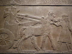 Chariot Group (Aidan McRae Thomson) Tags: nimrud relief britishmuseum london assyrian sculpture mesopotamia ancient